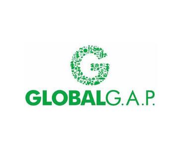 GLOBAL GAP认证