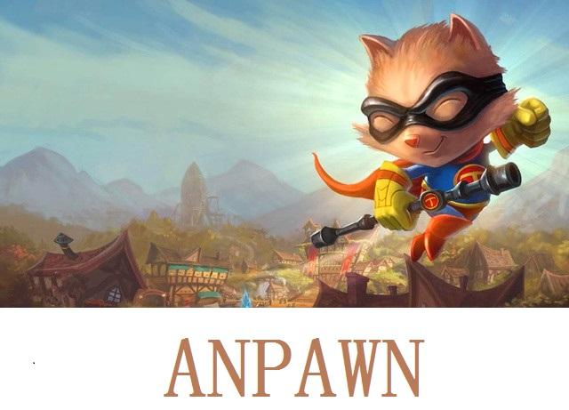 anpawn.com