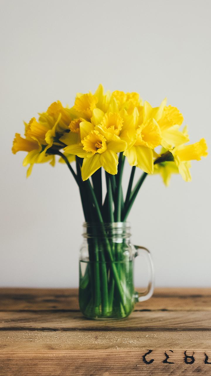 黄色水仙花花束插花
