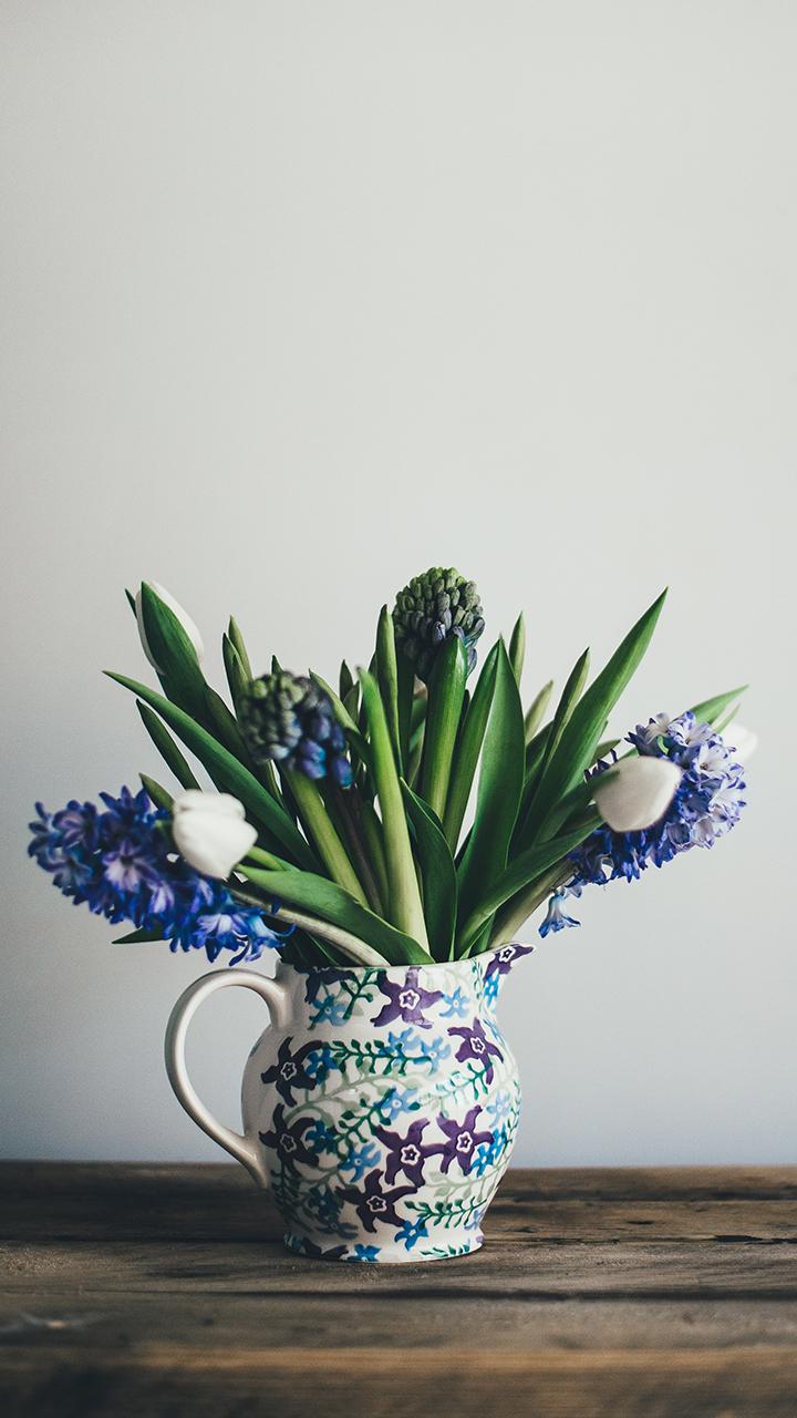 紫色风信子插花