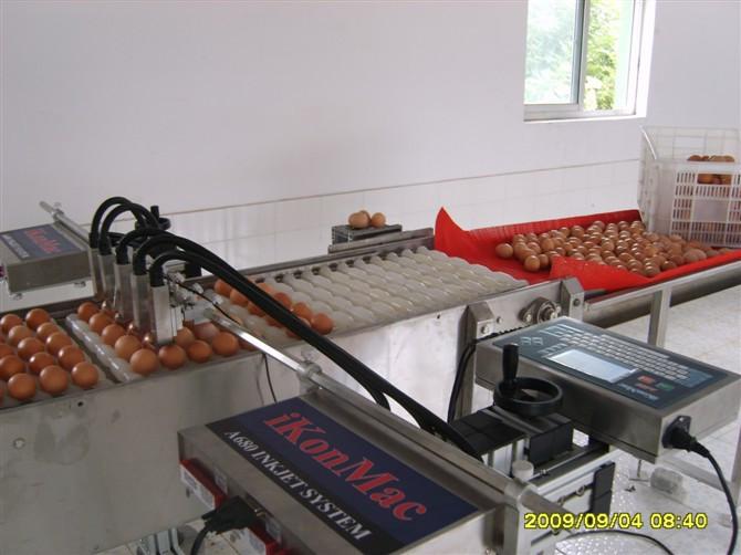 易可玛鸡蛋喷码机A680