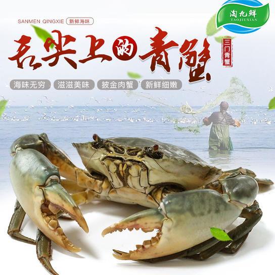 淘九鲜三门青蟹 肉鲜味甜每盒3~4只裸蟹约2斤(雄蟹、雌蟹随机)