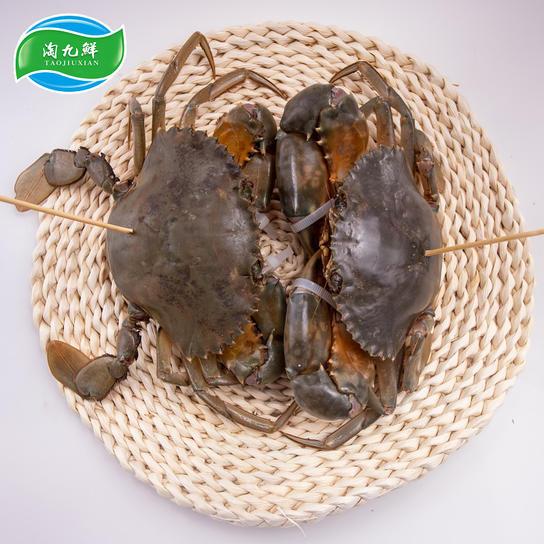 三门青蟹 肉鲜味甜每盒3~4只裸蟹约2斤(雄蟹、雌蟹随机)