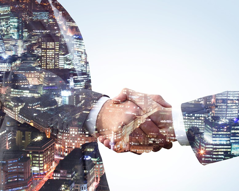 Company establishment, mergers and acquisitions