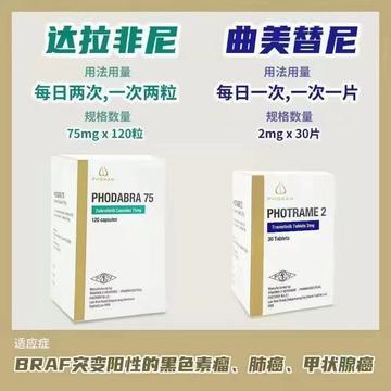 Trametinib曲美替尼中文说明书,价格,购买方法