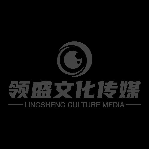 广州领盛传媒有限公司