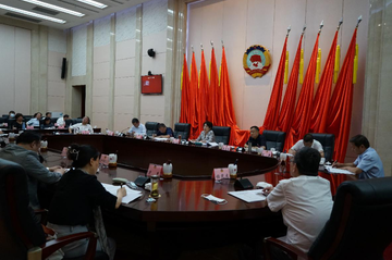 盟省委在省政协界别协商座谈会上作专题发言