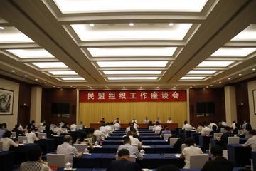 陕西民盟组织工作喜获表彰
