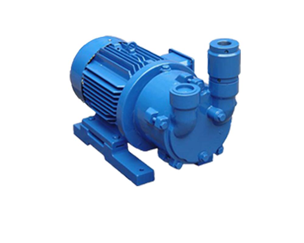2BV系列水环真空泵