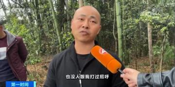 """""""天价竹笋""""当事村民接受采访 镇政府回应:损失了1000多斤"""