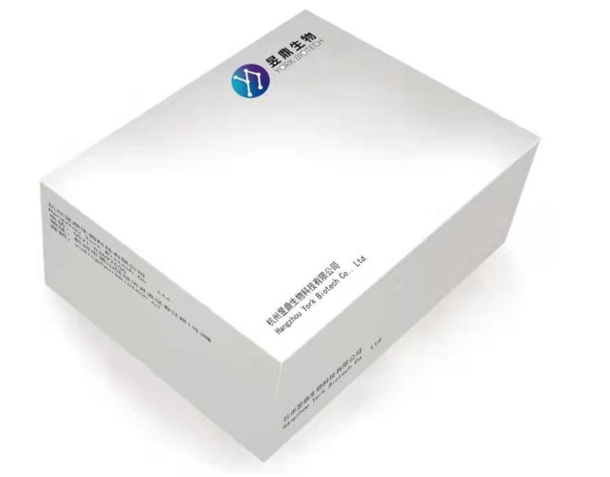 SARS-COV-2 Nucleic Acid Test Kit