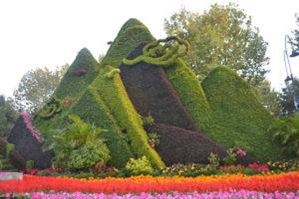 天津绿雕花坛津南绿雕展、东丽绿雕,滨海新区绿雕,