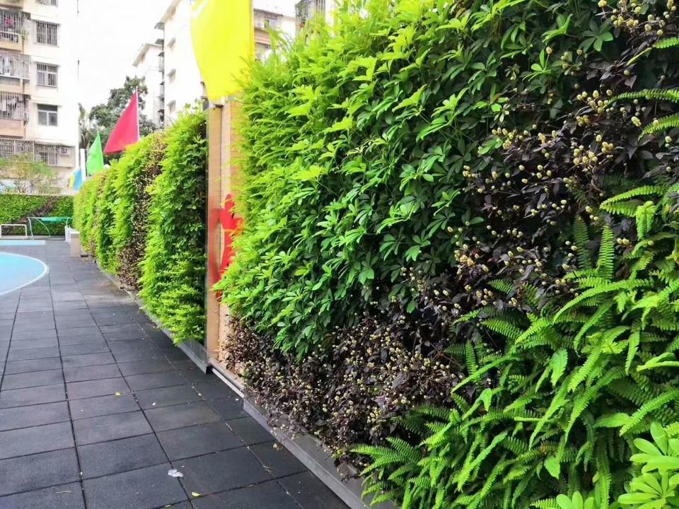 天津津南国展中心植物墙,天津津南吾悦广场植物墙,天津津南永旺植物墙