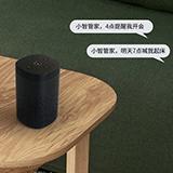 智能语音系统