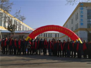 中国首家民营栈桥白花蛇舌草水投产 春节期间将进军全国市场
