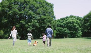 中海十里观澜——生态篇