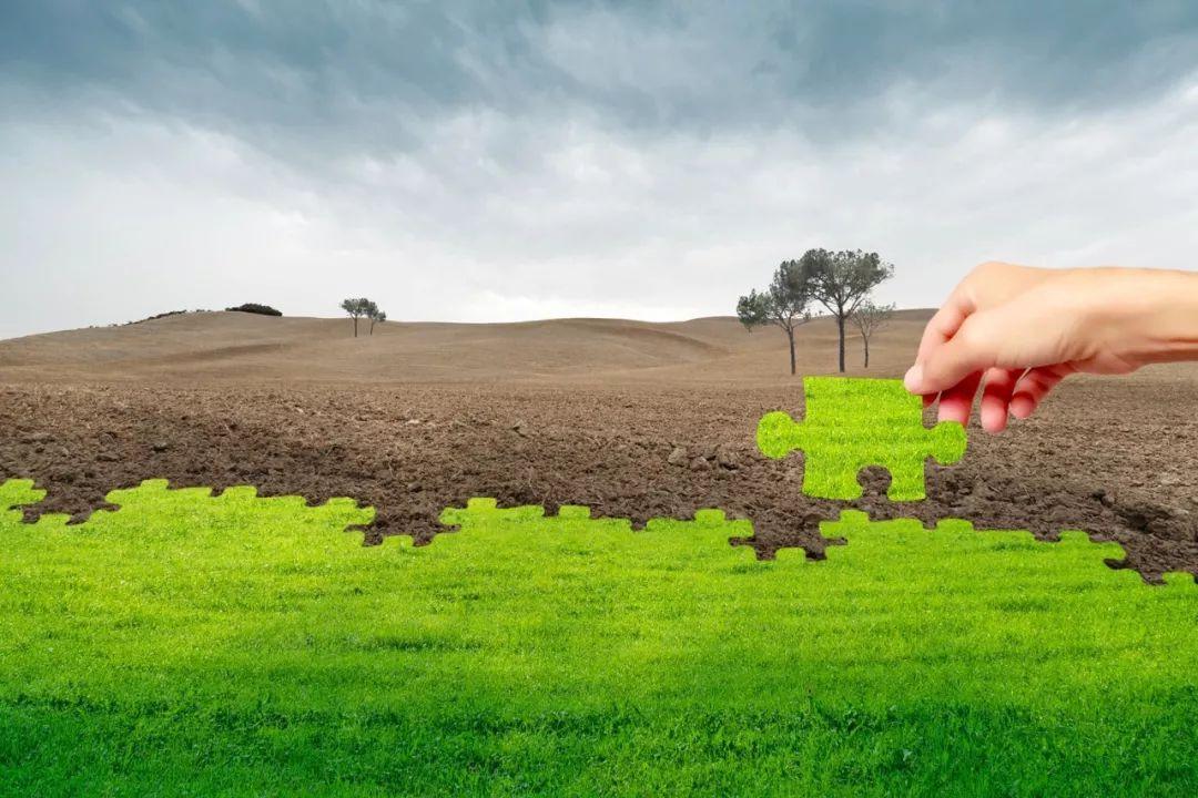 土壤污染状况调查及风险评估