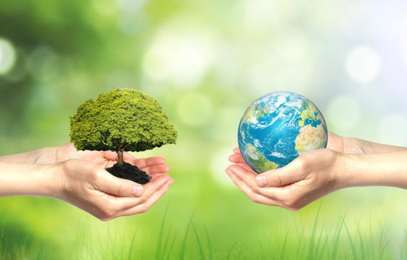 环境影响评价与竣工验收