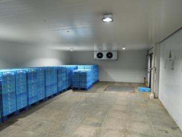 在冷库建造中需要注意的问题有哪些?