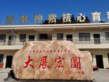 本公司与衡阳正大保持着长期友好合作关系,并派遣专人驻扎联系,促进共同发展