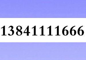 13841111666大连移动极品3连号