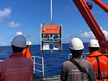"""""""向阳红03""""船首次在南海获得深海水虱样品"""